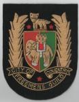 guild-blazer-badge-small-size